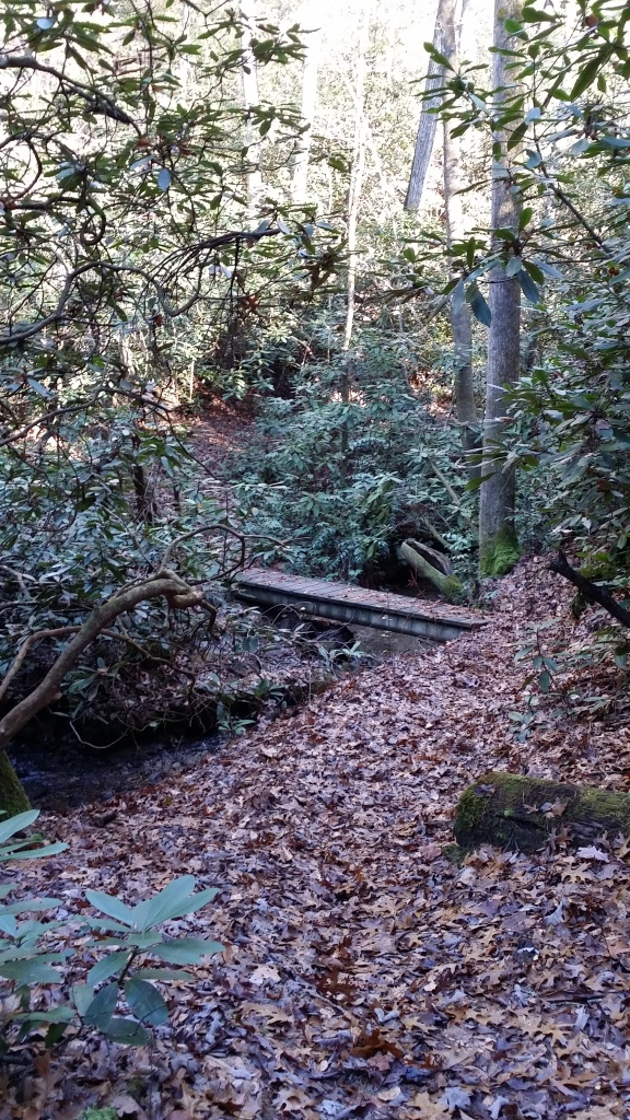 One of the many footbridges along the trail.