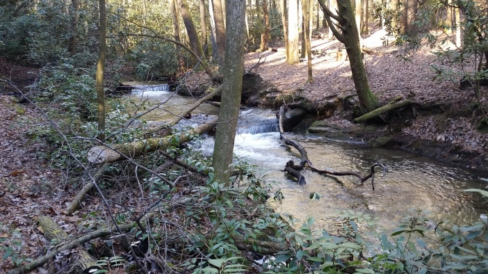 We had to cross this creek numerous times.